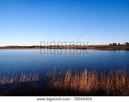 Wetland Pond With Blue Sky And Grasses