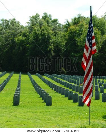 An American Flag at a Military Graveyard