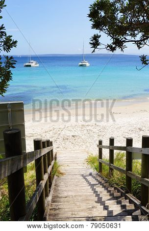 Boardwalk Views Cabbage Tree Beach Australia