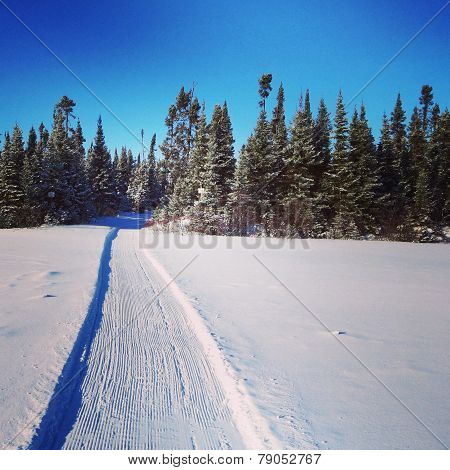 Scenic Instagram Of Snowmobile Tracks In Snow