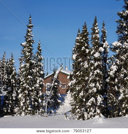 Scenic Instagram Of Cottage In Winter