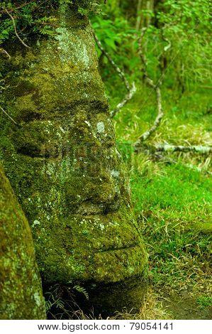 large rock carving floreana island galapagos