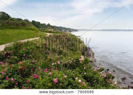Newport Rhode Island Küste