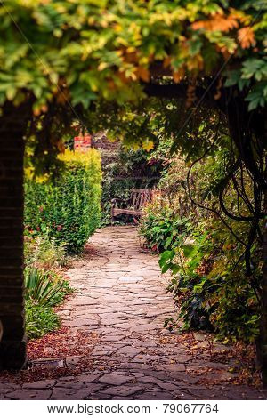 Pathway in a park in autumn