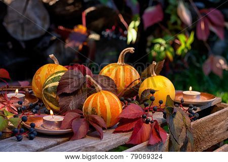 Autumn Still Life Of Pumpkins, Autumn Leaves And Candles