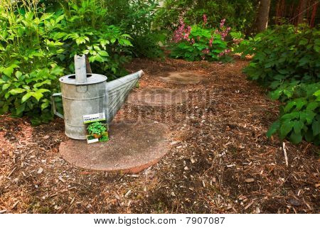 A Worn Watering Can Sits With A Marjoram Seed Packet On A Garden Path