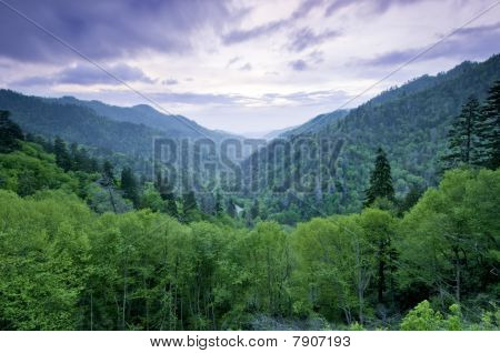 Smoky Mountains Vista