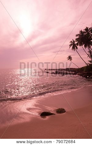 Tropical Pink Landscape