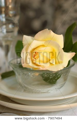 Tableware In Beige