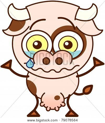 Cute cow crying and feeling sad
