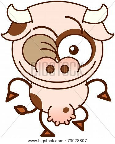 Cute cow winking mischievously