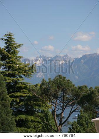 Schweizer Alpen und tress