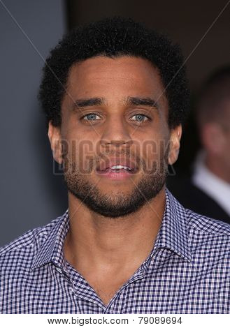 LOS ANGELES - AUG 01:  MIchael Ealy arrives to