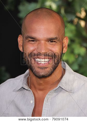 LOS ANGELES - AUG 06:  Amaury Nolasco arrives to