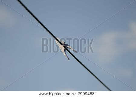 Clothes peg on washing line