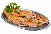 image of norway lobster  - Tray of norway lobster on white background - JPG