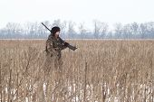 picture of hare  - The hunter on  a winter hunting hare - JPG