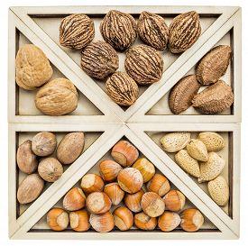 foto of tangram  - variety of nuts  - JPG
