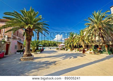 Stari Grad On Hvar Island Palm Waterfront