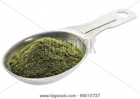 green freeze-dried organic wheat grass powder, nutritional supplement, on an isolated measuring tablespoon