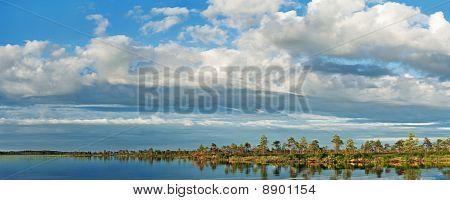 Marshy Lake