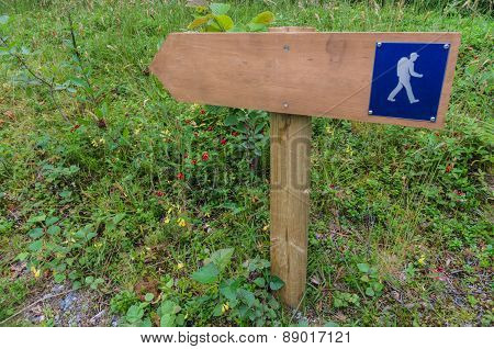 Wooden Hiking Signpost In A Forest Area