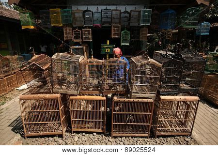 YOGYAKARTA, INDONESIA - JULY 31, 2011: Vendor sells song birds and parrots at the Pasar Ngasem Market in Yogyakarta, Central Java, Indonesia.