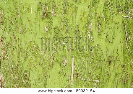 Textured Abstract Background In Green Color