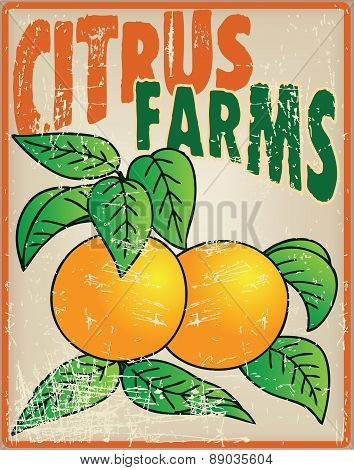 Oranges On The Old Card