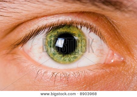 Male Eyes