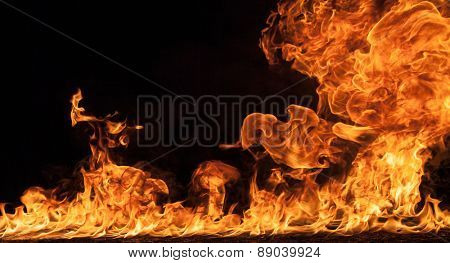 Fire flames on black background background