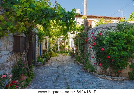 Ancient Street with flowers