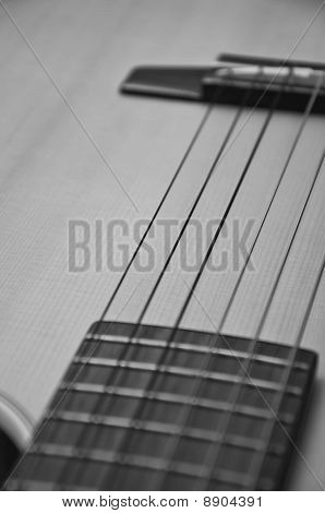 B&W acoustic guitar