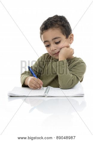 Young Schoolboy Studying Hard