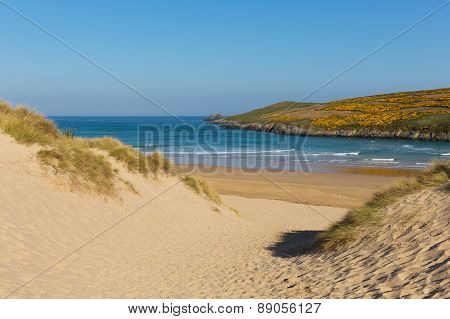 Crantock beach sand dunes Cornwall England UK near Newquay