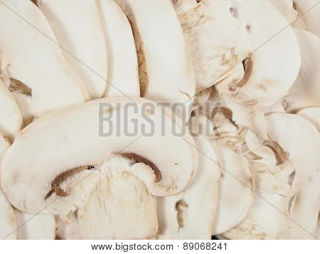Champignon Mushroom Background