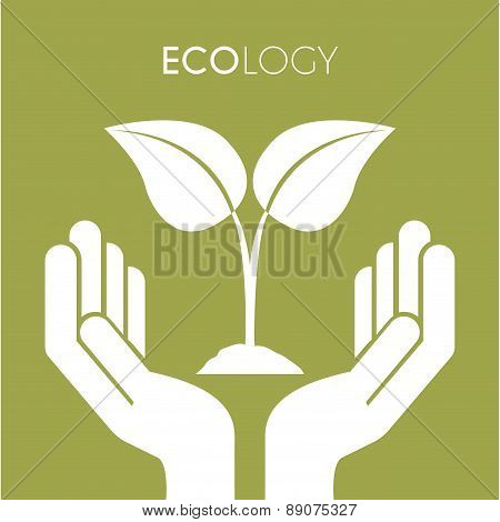 Two hands with leaves on green background Vector Illustration