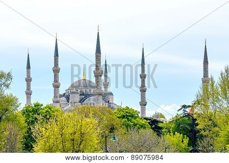 Domes and minarets of the Blue Mosque in Istanbul.