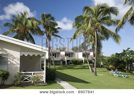 Antiguan Resort