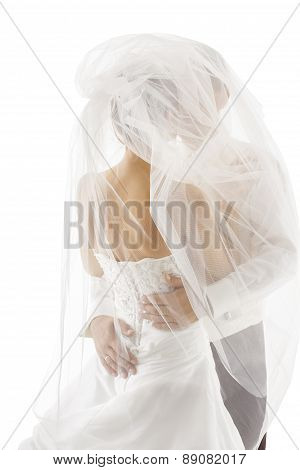 Bride And Groom Covered Veil, Wedding Couple Kissing, Back Rear View Over White Background