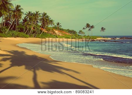 beautiful tropical beach at sunset with palm shadows - vintage retro style