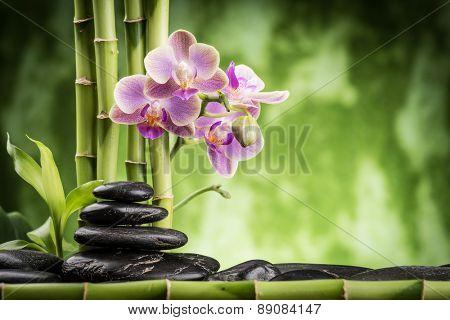 zen basalt stones ,orchid and bamboo