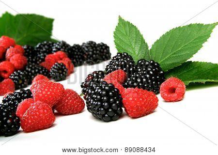 Studio soht of blackberries and raspberries on white background