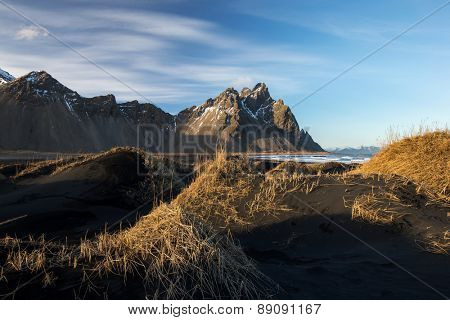Mountains and volcanic lava sand dunes by the sea in Stokksness, Iceland. The brown bushes are lavender plants desiccated in the winter but will flourish and bloom when spring comes.