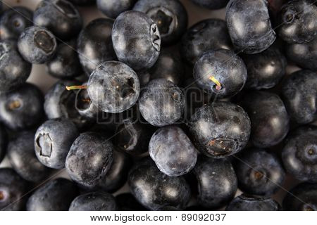 Blueberries - clsoe up, studio shot