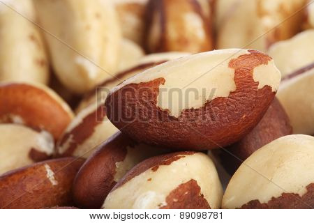 Brazilian nut on white background