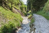 stock photo of ravines  - Mountain ravine in Pieniny mountains near the Trzy Korony Mount - JPG