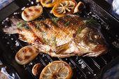 stock photo of fried onion  - fried fish carp with lemon and onion on grill pan horizontal close - JPG