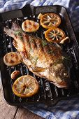 pic of fried onion  - fried fish carp with lemon and onion on grill pan vertical close - JPG