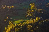 pic of serbia  - Aerial view of a meadow illumintad by ray of light at autumn sunrise - JPG